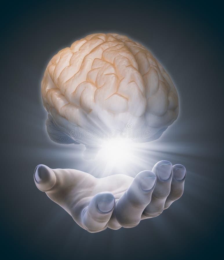 Hand, die ein Gehirn hält lizenzfreie abbildung