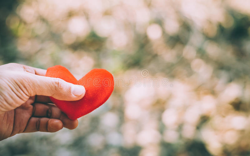 Hand, die ein rotes Inneres anhält stockbild