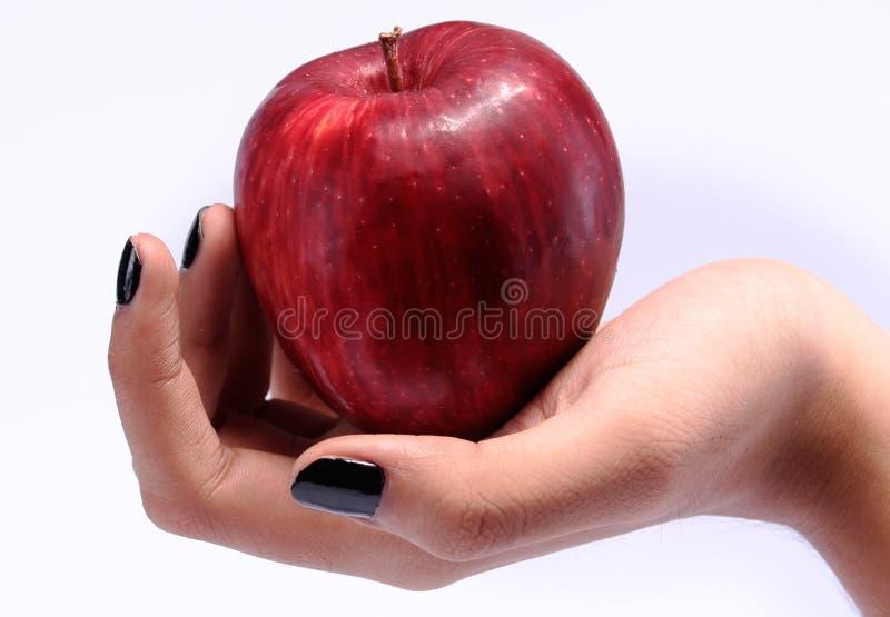 Hand, die einen Apfel anhält stockbild