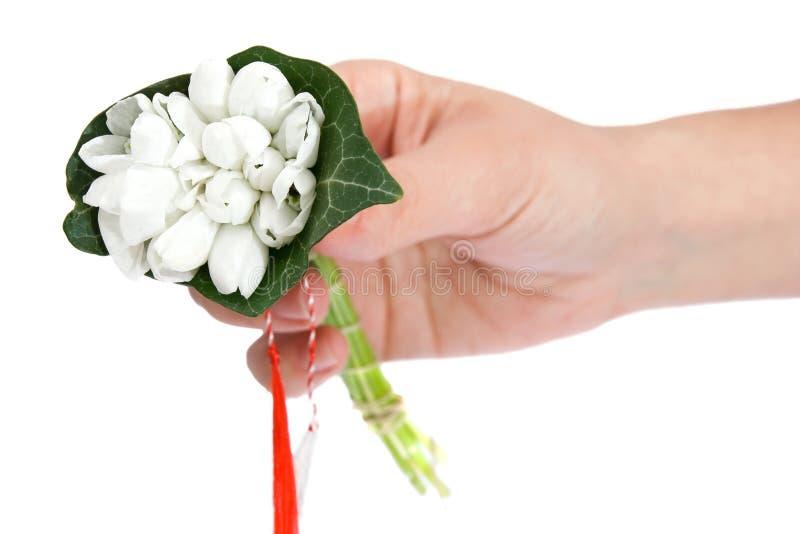 Hand, die einen Blumenstrauß der Schneetropfen anhält lizenzfreie stockfotografie