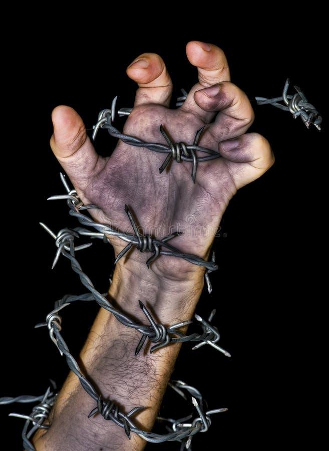 Hand, die einen Stacheldraht ergreift stockfoto