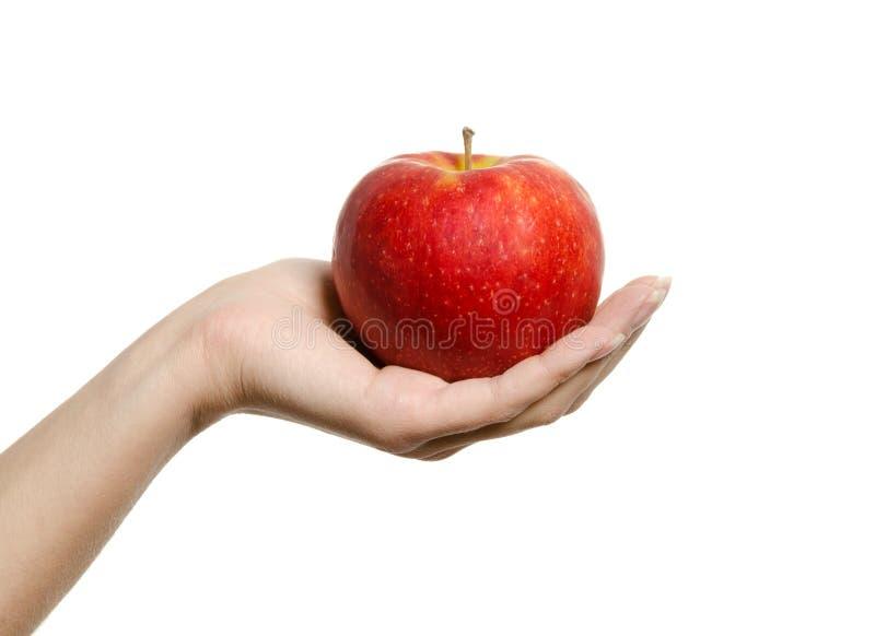 Hand die en een perfecte rode appel houdt toont stock foto