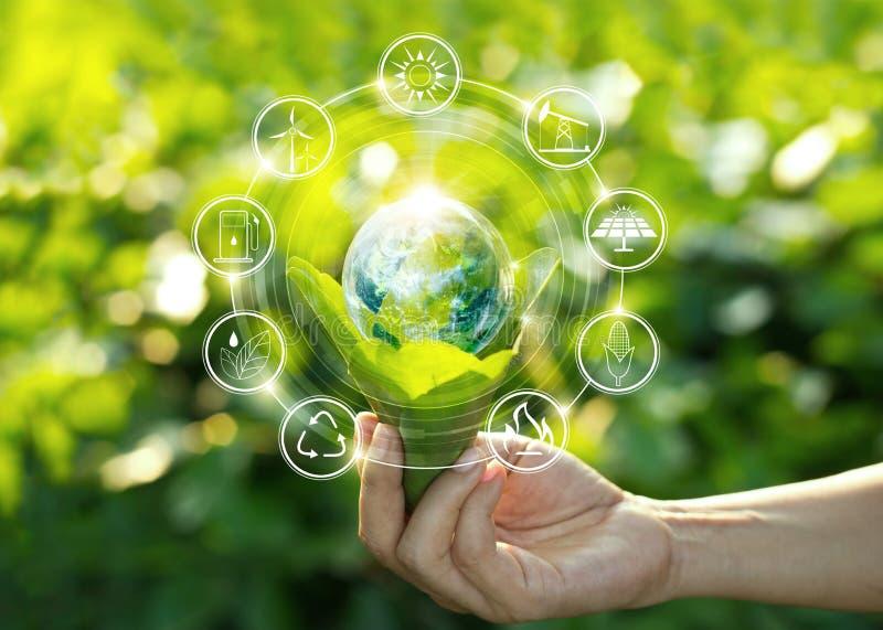 Hand die gloeilamp op groene bladeren met energiebronpictogrammen houden stock foto