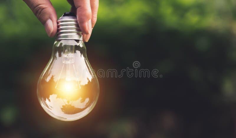 Hand die gloeilampen met het gloeien op aardachtergrond houden Idee, creativiteit en besparingsenergie met gloeilampen stock foto