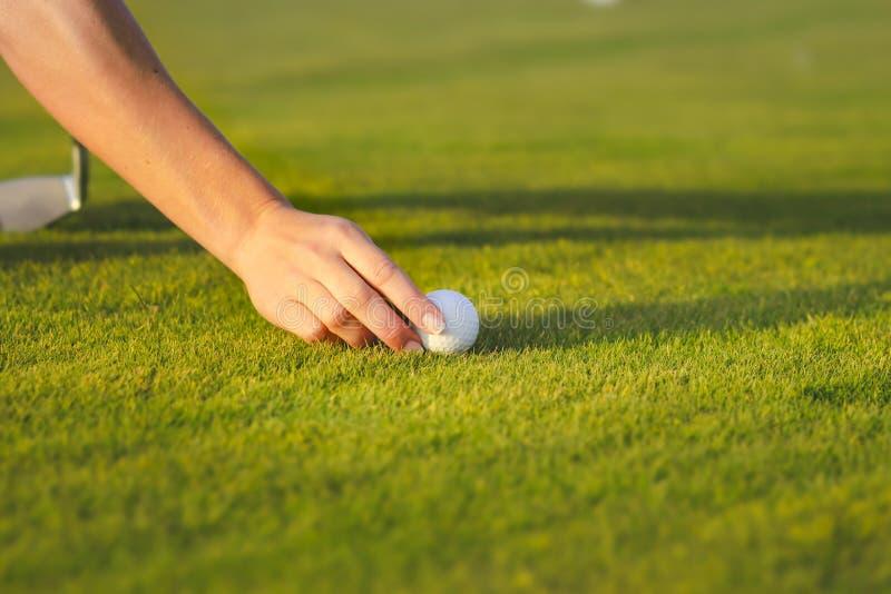 Hand die golfbal plaatsen op T-stuk royalty-vrije stock afbeeldingen