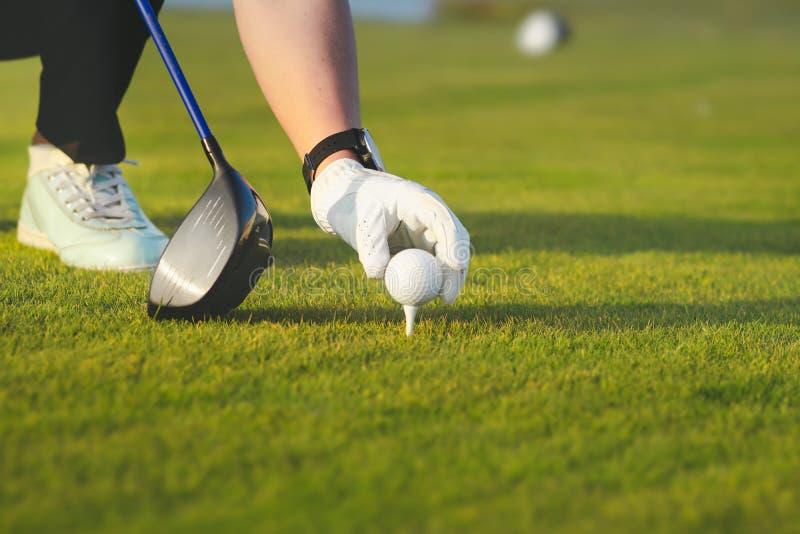 Hand die golfbal plaatsen op T-stuk stock afbeeldingen
