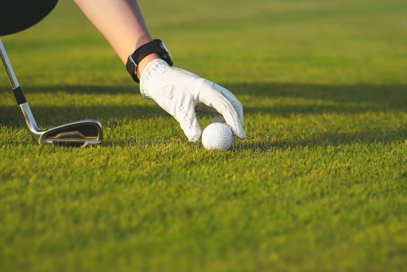 Hand die golfbal plaatsen op T-stuk royalty-vrije stock foto