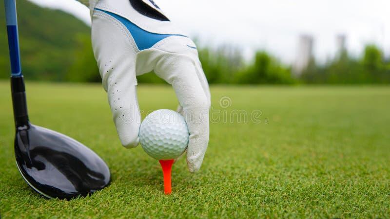 Hand, die Golfball auf T-Stück in Golfplatz einsetzt lizenzfreie stockbilder