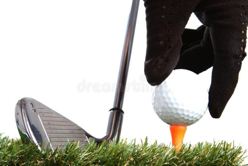 Hand, die Golfball zu einem T-Stück setzt stockfotografie