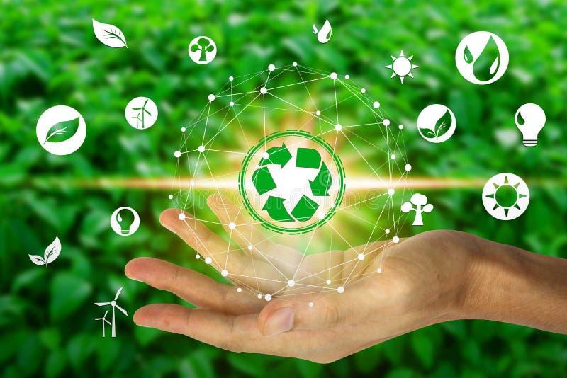 Hand, die mit Umwelt Ikonen ?ber der Network Connection auf Naturhintergrund, Technologie?kologiekonzept h?lt lizenzfreie stockbilder