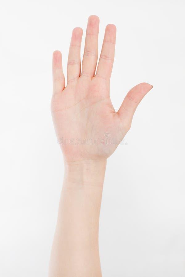 Hand die op wit wordt geïsoleerdi Stemmende hand Spot omhoog De ruimte van het exemplaar malplaatje spatie royalty-vrije stock fotografie
