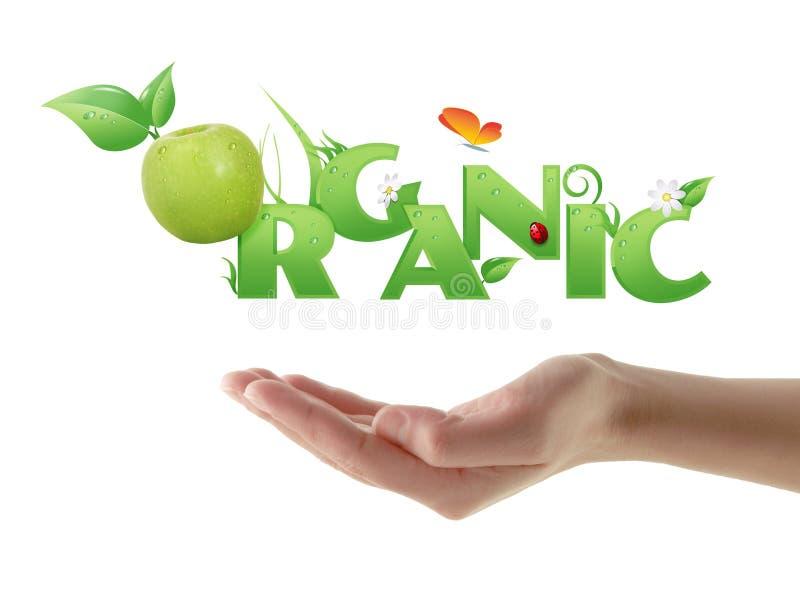 Hand, die organischen ökologischen Entwurf des Wortes hält stock abbildung