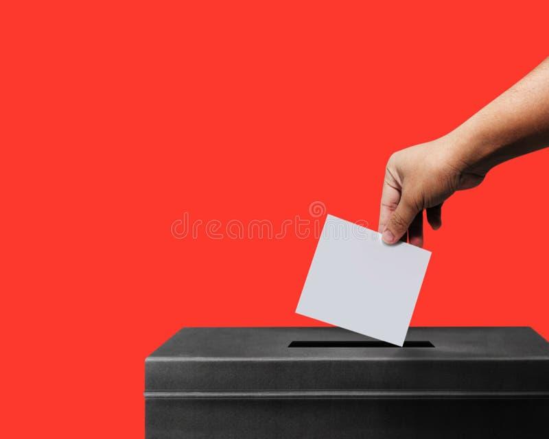 Hand, die Stimmzettel für Wahlabstimmungskonzept an lebendem korallenrotem pantone Hintergrund, Beschneidungspfad Rotes lokalisie lizenzfreie stockfotos
