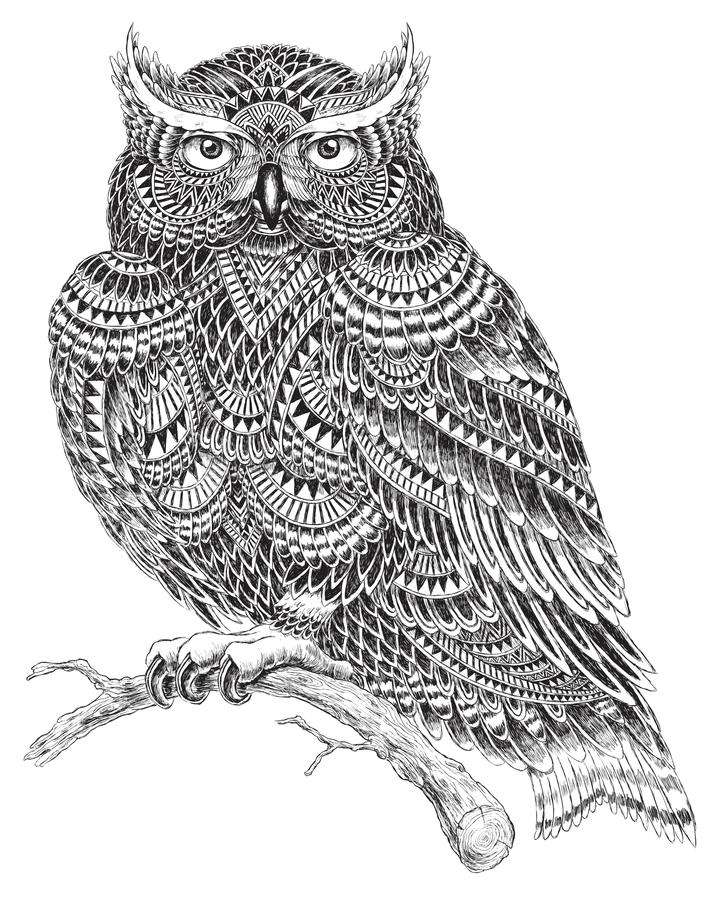 Hand dragen abstrakt modell Owl Illustration vektor illustrationer