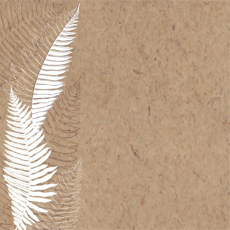 Hand-dragen bakgrund med ormbunken på kraft papper stock illustrationer