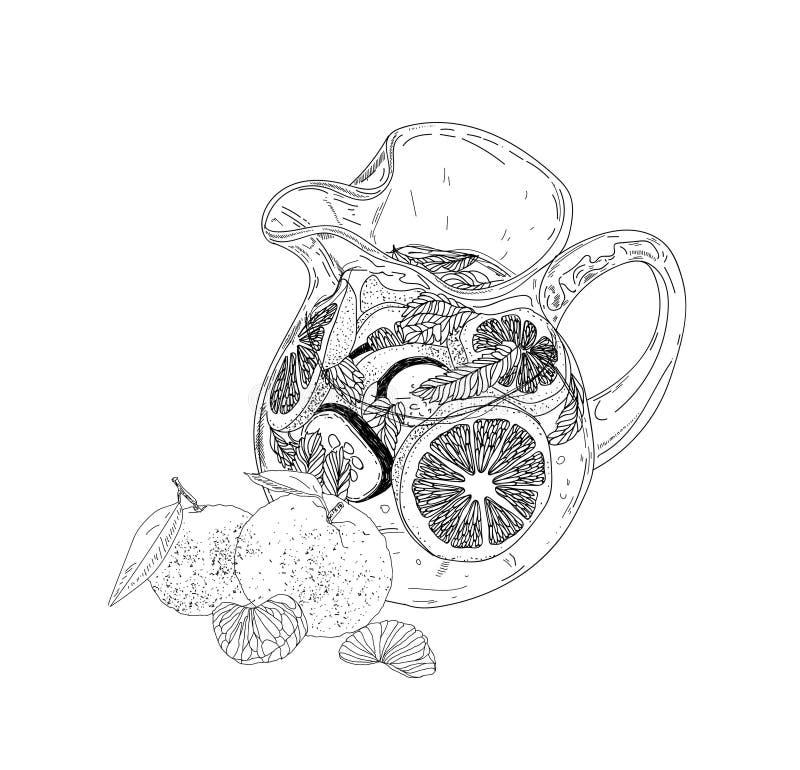 Hand dragen drink för vektorsommaris med cittrus Citron och mint Detoxvatten skissar Linjär illustration royaltyfri illustrationer