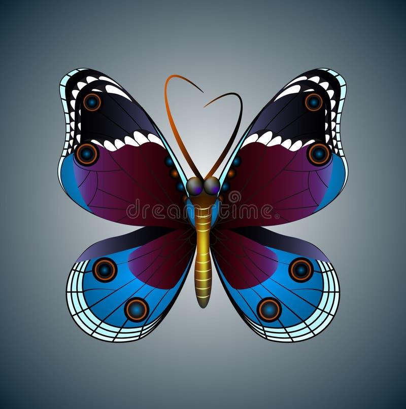 Hand dragen fjärilsillustration Dekorativ abstrakt klotterdesignbeståndsdel vektor illustrationer
