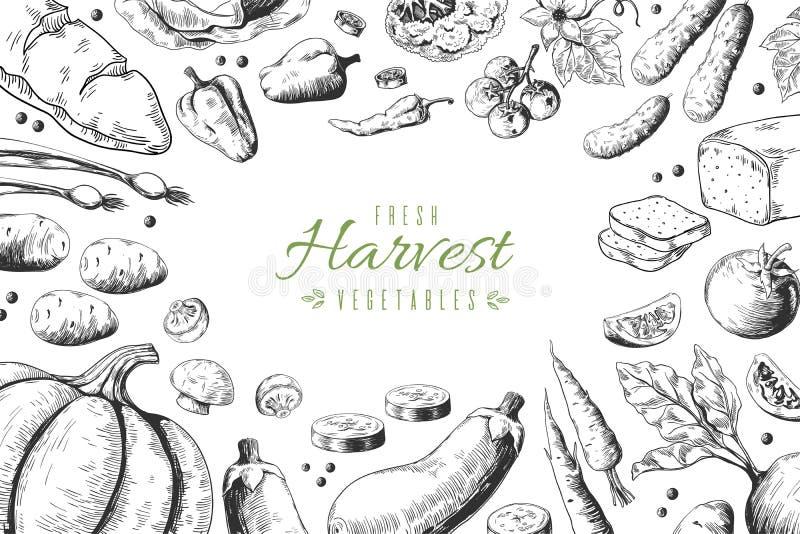 Hand dragen gr?nsakbakgrund Organisk mat skissar, den sunda trädgårdrestaurangmenyn Havre för vektormorotkronärtskockor vektor illustrationer