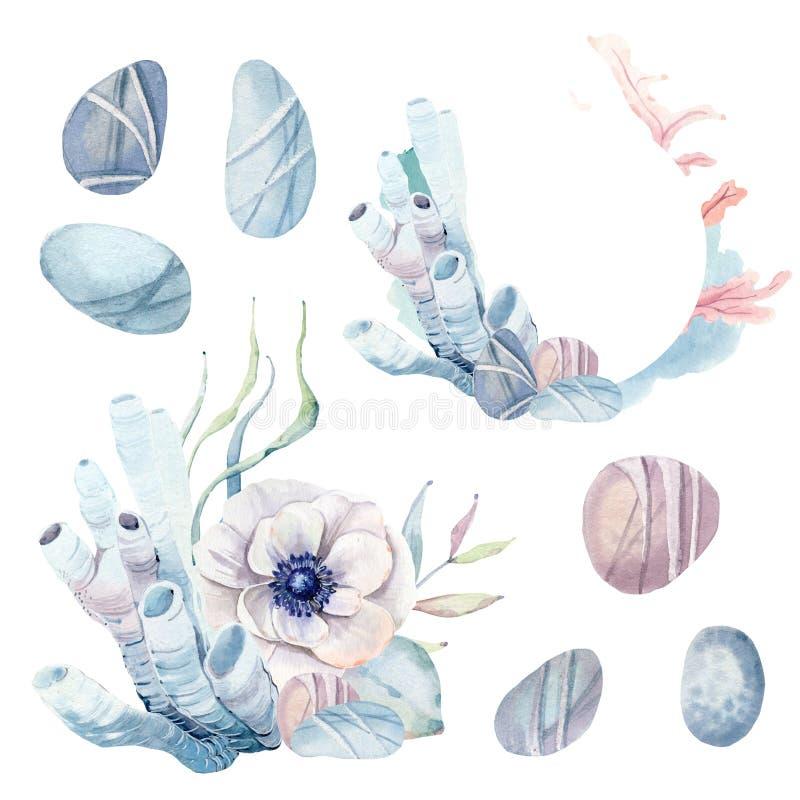 Hand dragen havsclipart stock illustrationer