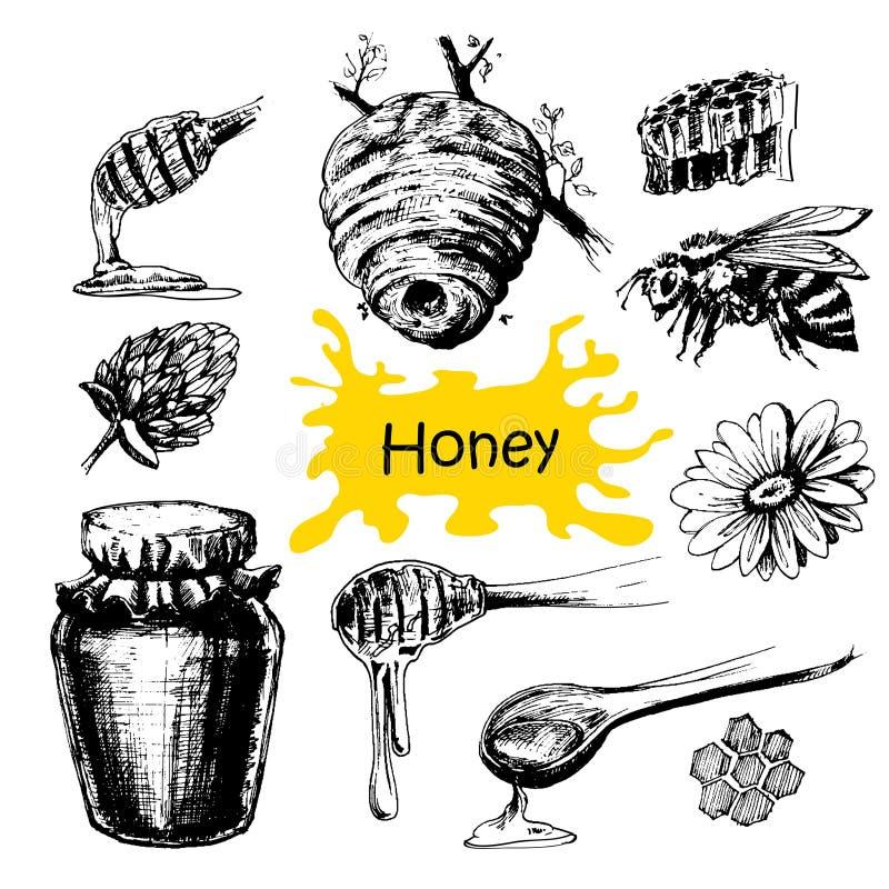Hand dragen honunguppsättning royaltyfri illustrationer