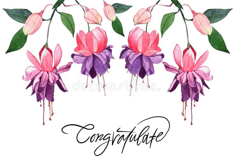 Hand-dragen illustration för fuchsia vattenfärg Härlig rosa flowe stock illustrationer