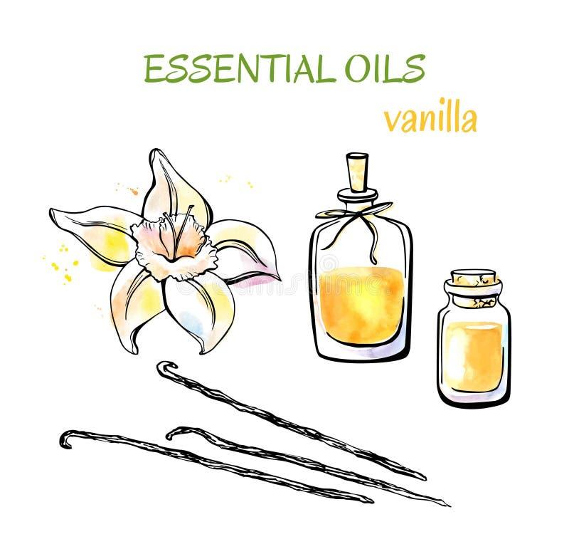 Hand dragen illustration med nödvändig olja för vanilj vektor illustrationer