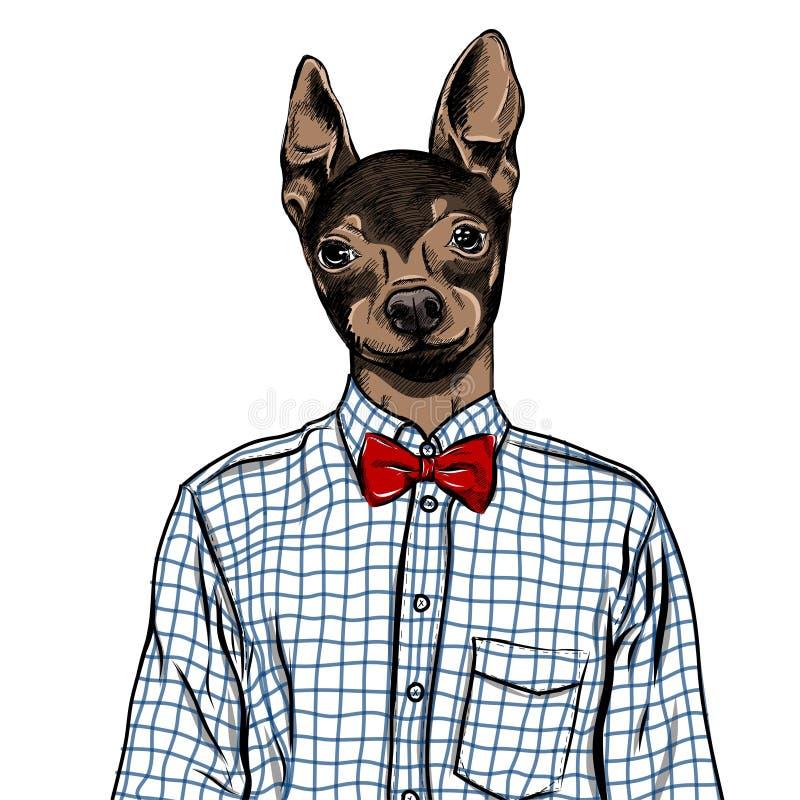 Hand dragen modeillustration av utklätt engelska Toy Terrier, i färger vektor stock illustrationer