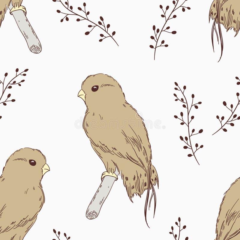 Hand dragen sömlös modell för fågel vektor illustrationer