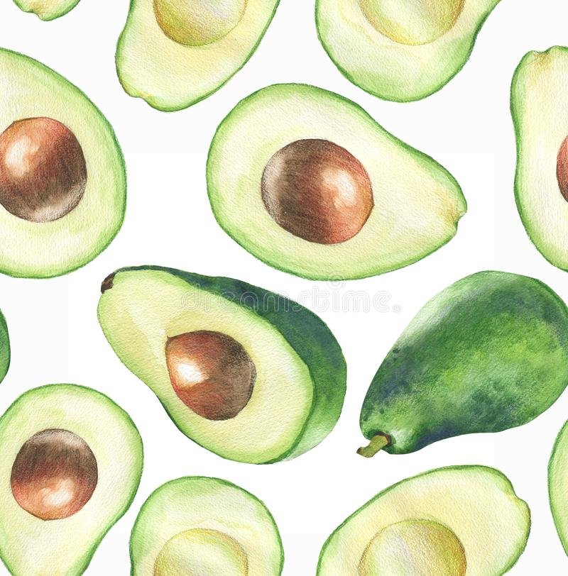 Hand-dragen sömlös modell för vattenfärg med den nya gröna avokadot på den vita bakgrunden vektor illustrationer