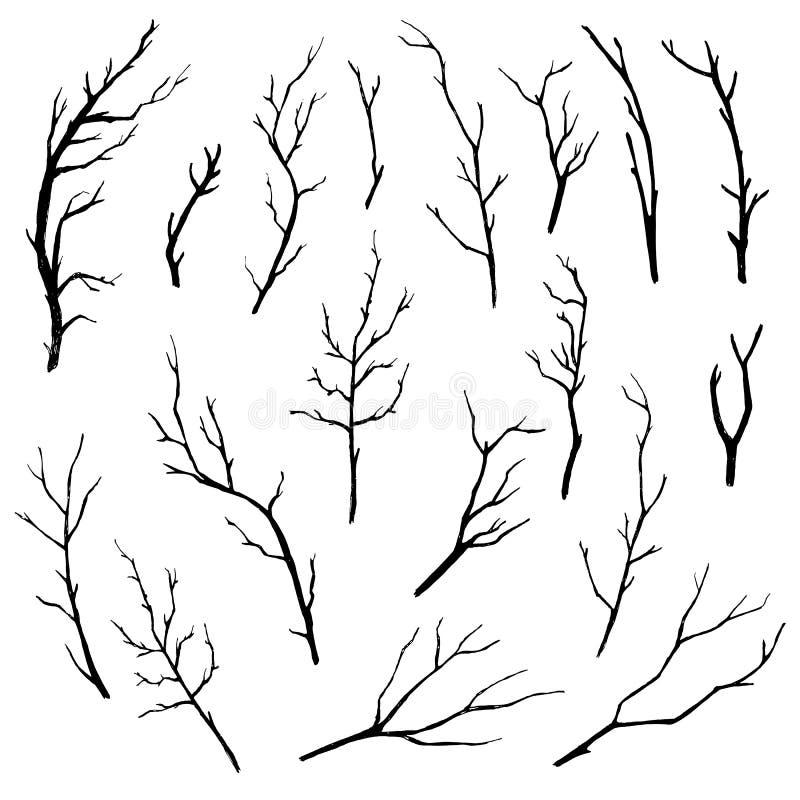 Hand dragen samling för trädfilialer royaltyfri illustrationer