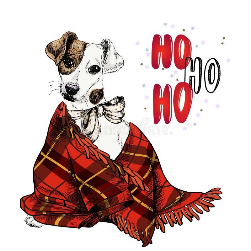 Hand dragen stående av pilbågen för band för Jack Russel terrierhund den bärande och plädfilten Vektorjulaffisch Xmas-hälsning vektor illustrationer