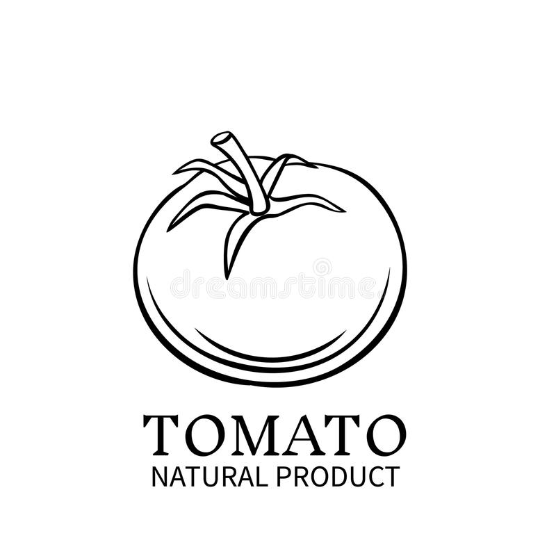 Hand dragen tomatsymbol royaltyfri illustrationer
