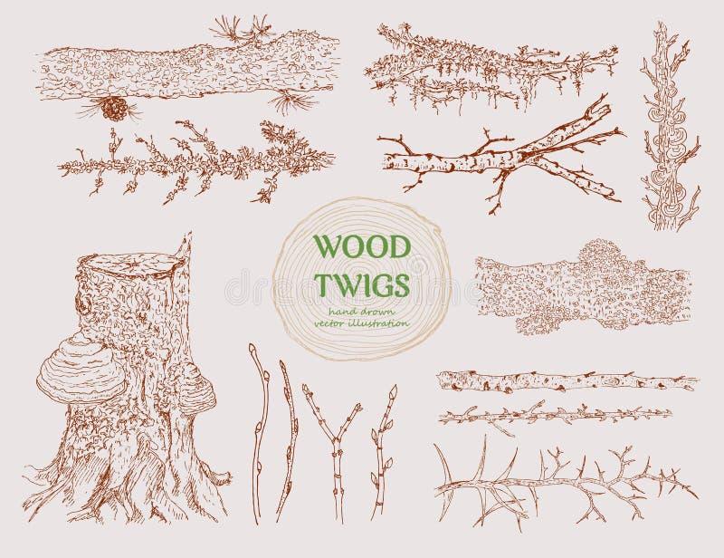 Hand dragen träfilialuppsättning vektor illustrationer