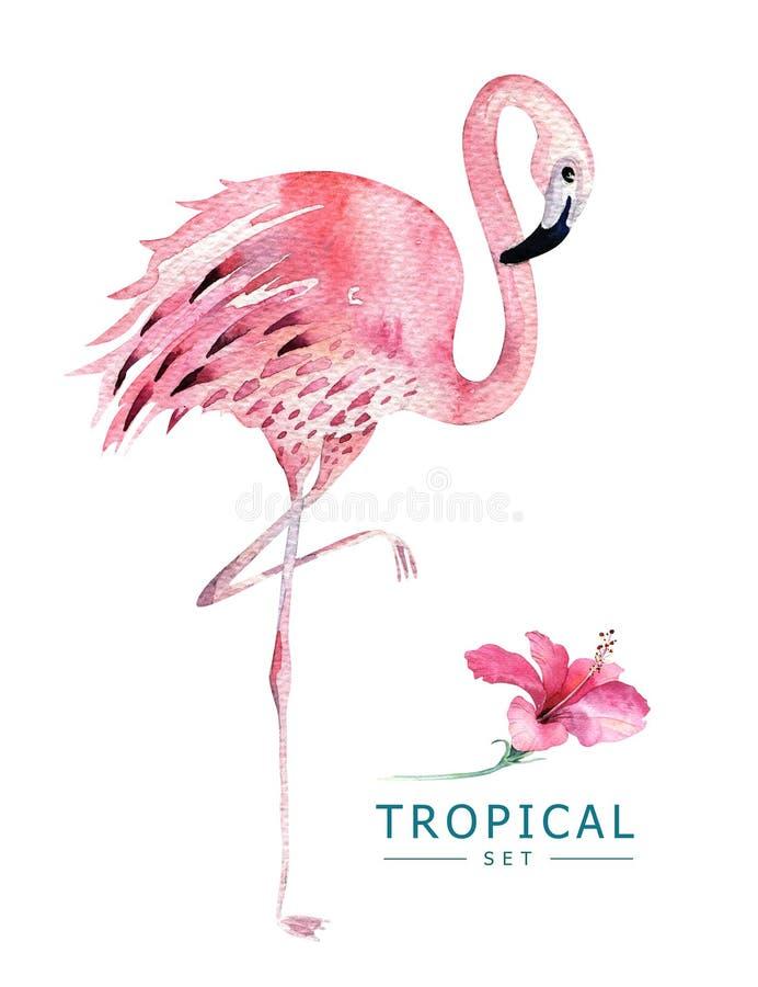 Hand dragen tropisk fågeluppsättning för vattenfärg av flamingo Exotiska fågelillustrationer, djungelträd, Brasilien moderiktig k royaltyfri illustrationer