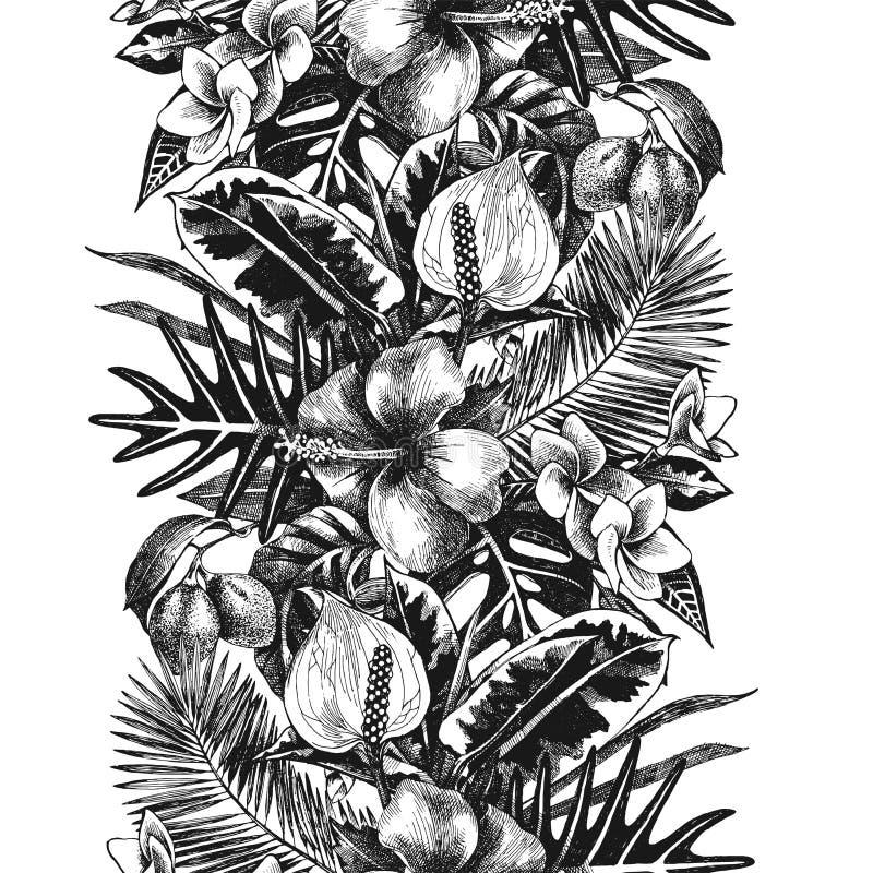 Hand dragen tropisk gräns stock illustrationer