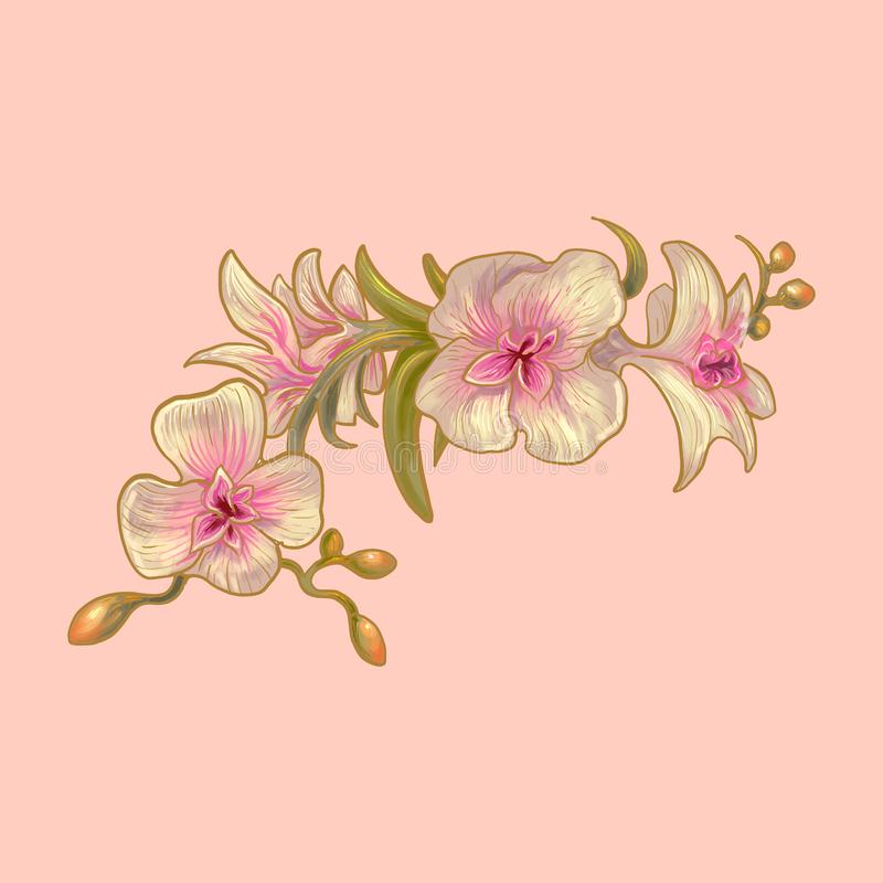 Hand dragen tropisk orkidéblomma royaltyfri illustrationer