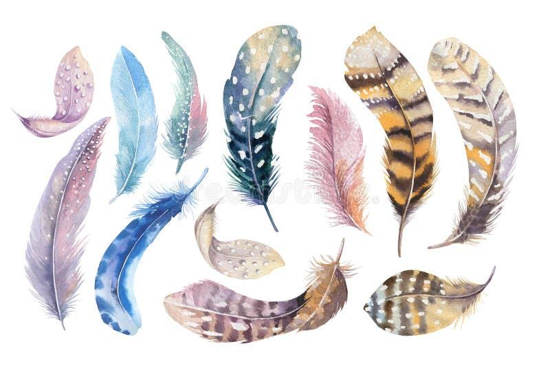 Hand dragen uppsättning för fjäder för vattenfärgmålningar vibrerande Boho stil vektor illustrationer