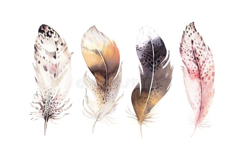 Hand dragen uppsättning för fjäder för vattenfärgmålningar vibrerande Boho stilvingar Illustration som isoleras på white Fågelflu stock illustrationer