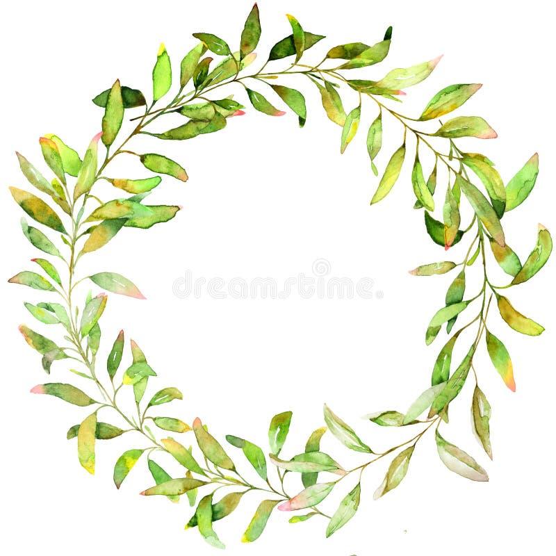 Hand dragen vattenfärgillustration Botanisk krans av gräsplanfilialer och sidor stock illustrationer