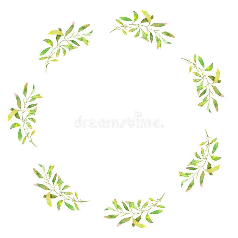 Hand dragen vattenfärgillustration Botanisk krans av gräsplanfilialer och sidor royaltyfri illustrationer