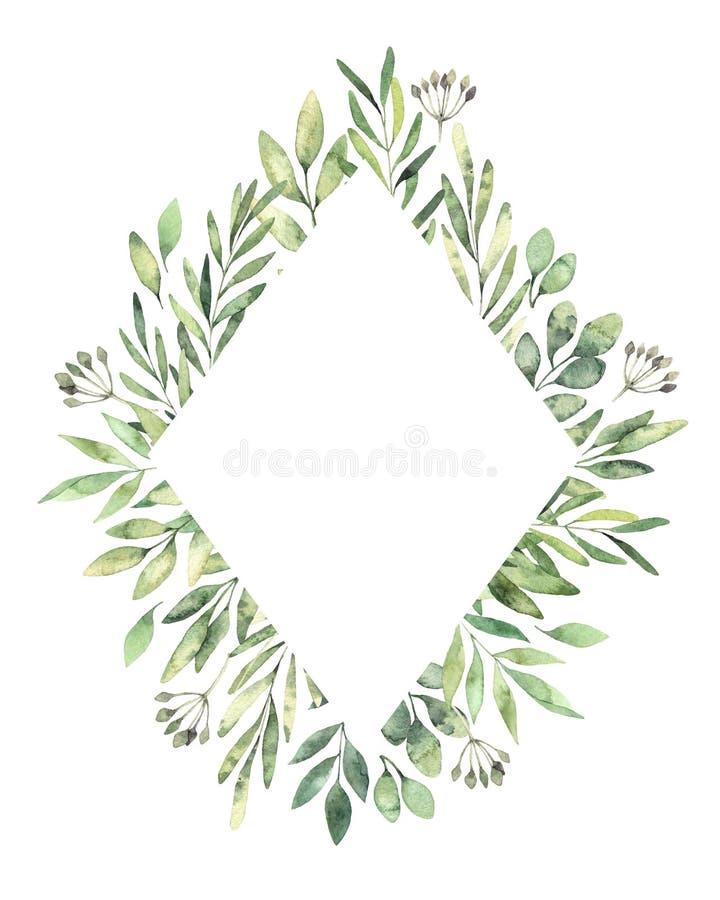 Hand dragen vattenfärgillustration Botanisk rombetikett med royaltyfri illustrationer