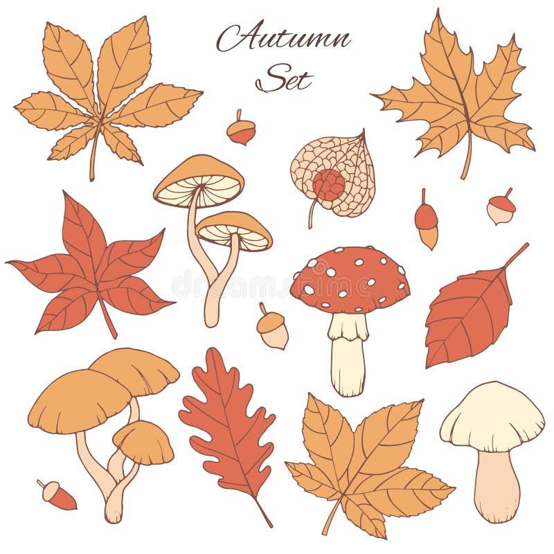 Hand dragen vektorhöstuppsättning med eken, poppel, bokträd, lönn, aspHand dragen vektorhöstuppsättning med eken, poppel, bokträd stock illustrationer