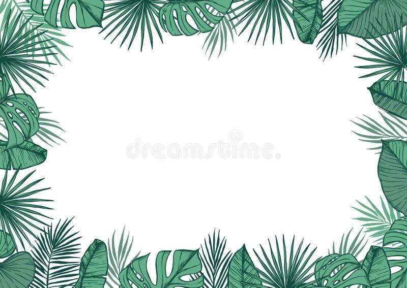 Hand dragen vektorillustration - ram med palmblad royaltyfri illustrationer