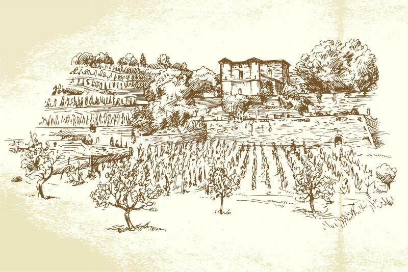 Hand dragen vingård stock illustrationer