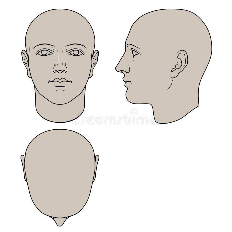 Hand dragit mänskligt huvud i 3 sikter royaltyfri illustrationer