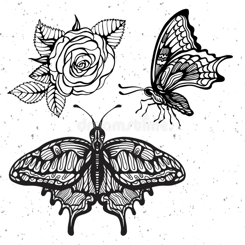 Hand-draw of monarch butterfly on a paper backround. Vector illustration. Place for your text. Hand-draw butterfly with rose flower on a white vintage background royalty free illustration