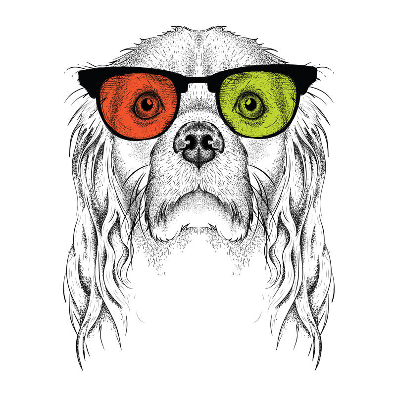Hand draw Cocker Spaniel in the colored glasses. Hand draw vector illustration stock illustration