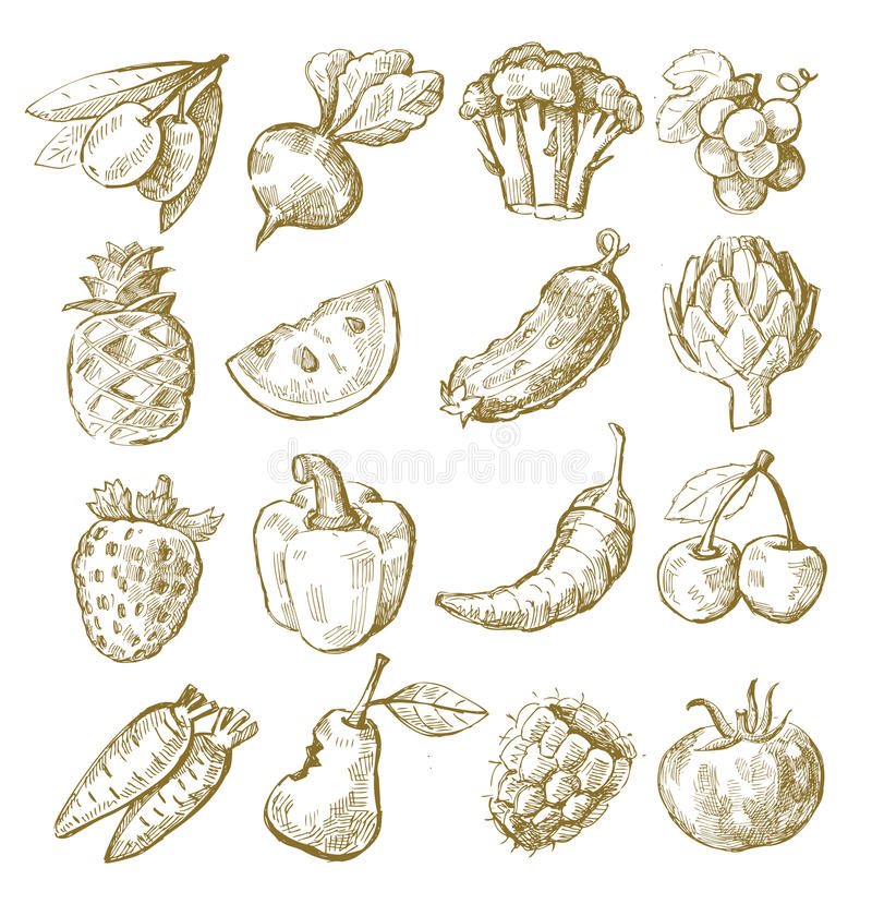 Hand draw fruit and vegetable vector illustration