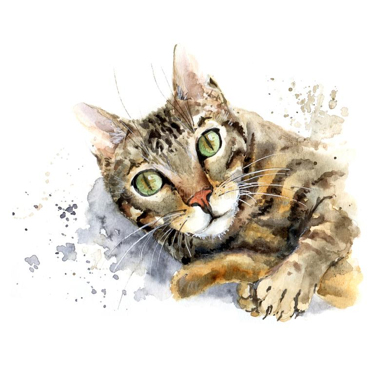 Watercolor cat portrait. The cat playing with his tail stock photo