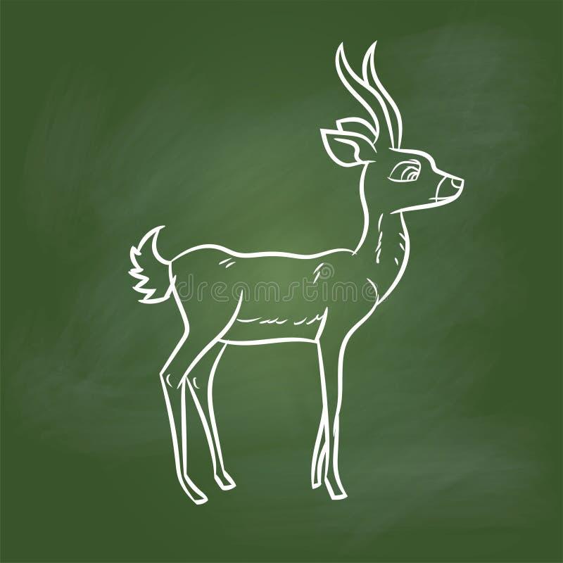 Hand drawing Antelope Cartoon on Green board -Vector illustration stock illustration